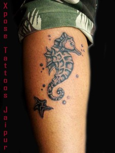 Seahorse Tattoo by XPose Tattoos Jaipur India
